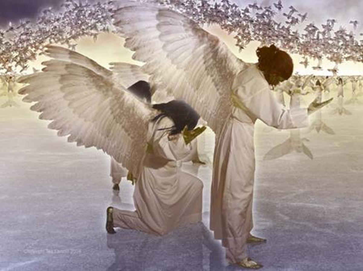 Si te asustas, no sigas leyendo, pero ¿te vas a perder de vivir tu propio cuento de Navidad y de ganar tus alas?