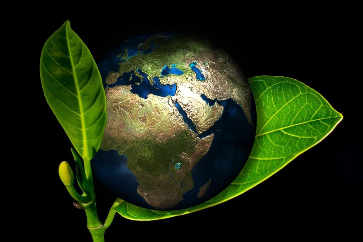 """Un Cumpleaños Ecológico: """"Felicidades Querido Planeta Tierra"""""""